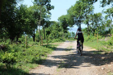 Von Ceroglie aus durchs Naherholungsgebiet und schattenspendende Wälder zum genialen Meerblick.