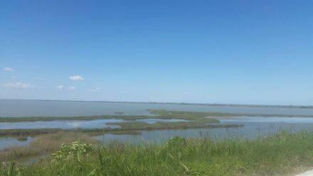 Die Salz- und Süßwasser-Lagunen beherbergen zahlreiche Vogelarten
