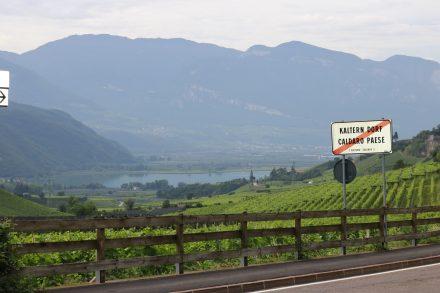 Blick auf den Kalterer See mit den Südtiroler Weinbergen. Hier wird viel Gewürztraminer angebaut.