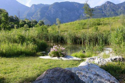 Grüne Wiesen, kleine Flüsse und bunte Blumen - das sind die malerischen Eindrücke im Brenta-Tal in Südtirol.