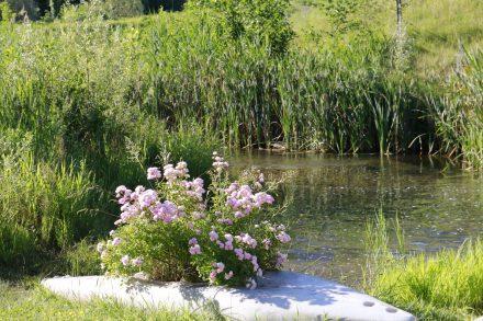Immer wieder findet man neben dem Brenta Radweg idyllische kleine Plätzchen.