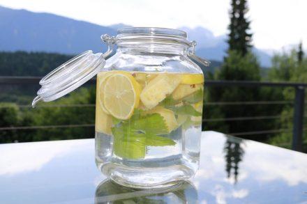 Wasserfrüchtchen - Wasser mit Geschmack durch Zitronenscheiben, Ananas und Zitronenmelisse.