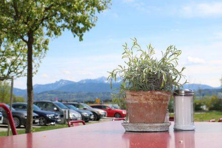 Schöne Aussichten auf die traumhafte Kulisse der Alpen.