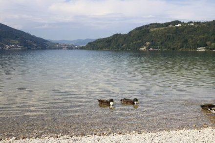 Der Lago di Caldonazzo im Trentino bietet vielfältige Möglichkeiten zum Sporteln, Genießen und Entspannen.