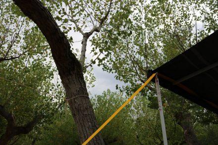 Mit Wind und Regen musste die Markise dieses Mal fest verspannt werden.