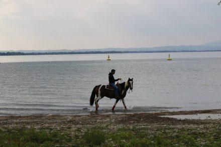 Die herbstliche Nachmittagsstimmung nutzt auch ein Reiter am Lago di Garda.