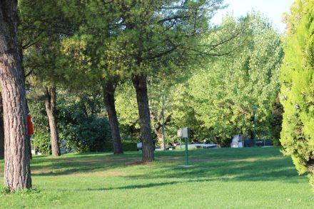 Am Europacamping in Pacengo am Gardasee spenden herrliche alte Bäume Schatten.
