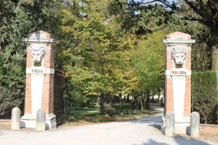 Die herrschaftliche Villa Norina inmitten der Weinberge.