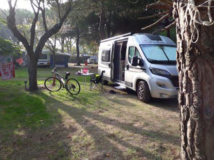 Viel Platz und herrliche alte Pinienbäume am Camping Village Cesenatico.