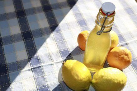 Bio-Zitronen und Mandarinen geben dem Zitrussirup seinen frischen Geschmack.