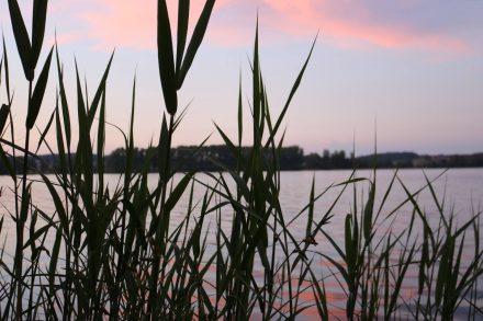 Herrliche Abendstimmung am Waginger See.