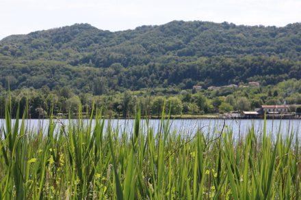 Der Lago di Lago vom Nordufer aus - rund um den See geht ein wunderschöner Naturwanderweg.