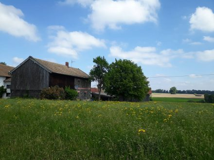Die Rupertiwinkel Panoramatour geht über kleine Seitenstraßen, Feldwege, vorbei an Bauernhöfen und kleinen Siedlungen.