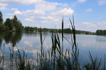 Am Ufer des Waginger Sees am Camping Schwanenplatz.