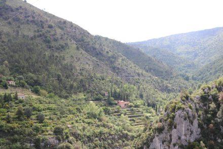 Die D2566 ist eine der berühmtesten Straßen im Hinterland der Provence.