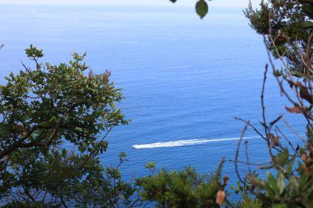 Herrlich azurblau das Meer an der ligurischen Küste.