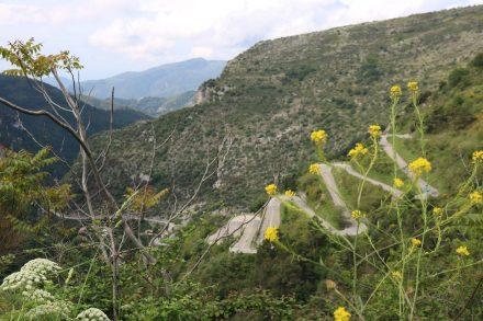 Von Nizza bis Mentor schlängelt sich die berühmte D2566 in und durch die Berge.