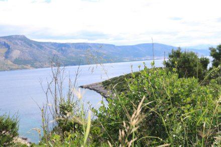 Zahllose Buchten, grüne Vegetation und der Blick auf Brac.