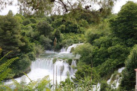 Immer wieder neue Blickwinkel auf Wasser und wildes Grün drumherum.