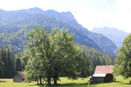 Viel Grün, eingerahmt von den Bergen auf dem Weg von Tarvis nach Kranjska Gora.