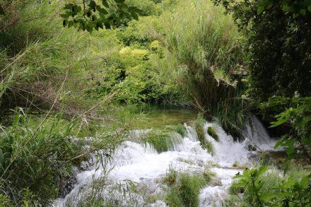 Überall rauschen kleine Wasserfälle zwischen dem dichten Grün.