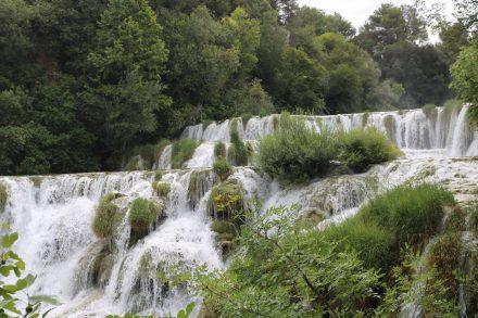 Zwischen Bäumen und Sträuchern fällt das Wasser wie ein Zuckerguss.