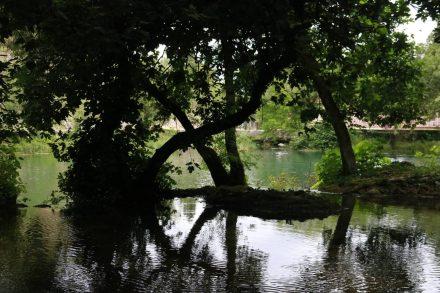 Licht, Schatten und Wasserspiegelungen machen den Krka Nationalpark zum Märchengarten.