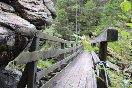 Eine Holzbrücke führt zum Alpenvereinsteig.