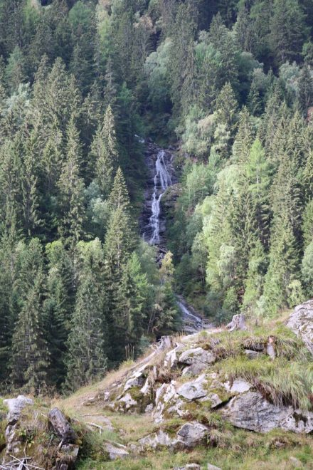 Und noch ein Wasserfall, dieser in den Wald eingebettet.