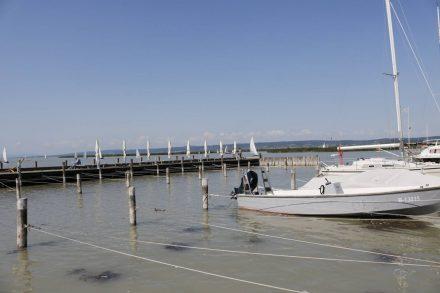 Zahlreiche Segelboote liegen im Neusiedler Hafen.