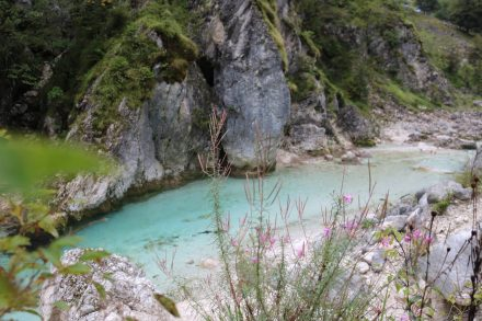 Man könnte die bemoosten Felsen, das grüne Wasser und die Blumen endlos fotografieren.