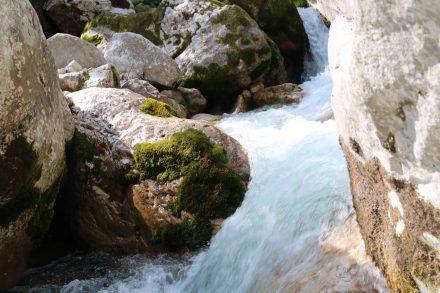 Kurz vor der Soca Quelle plätschert dieser Wasserfall.