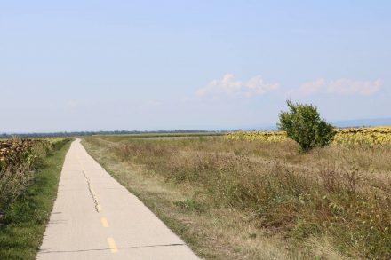 Grenznahe zwischen Ungarn und Österreich geht der Radweg schnurgerade durchs Niemandsland.