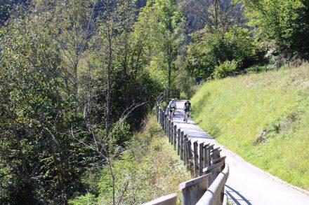 Der gut ausgebaute und beschilderte Radweg entlang der Mur.