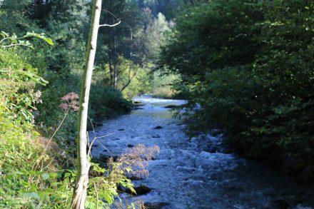 Die Gössering durchfließt das Gitschtal und mündet in die Gail.