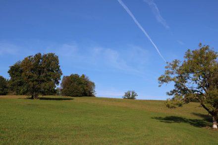 Das Wiesenplateau über Radnig unter stahlblauem Himmel.