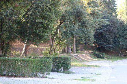 Zwischen schönem Baumbestand sind die Campsites am Camping Lucija aufgereiht.