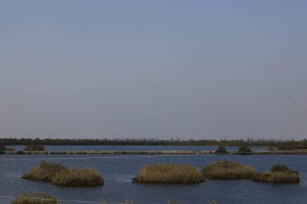 Wasser, Mini-Inseln, Wasser und wieder Wasser.