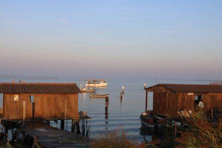 Kleine und große Fischerboote kommen vom Morgenfang zurück.