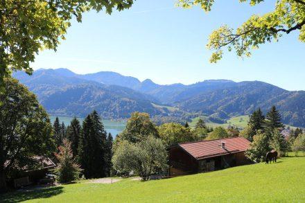 Der Aufstieg zum Schliersberg durch grüne Wiesen und Weiden.