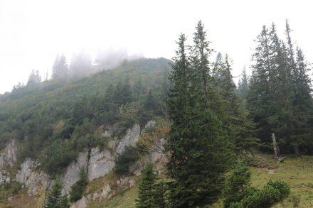 Von der Freudenreichkapelle geht es einen steilen, felsigen Steig hinab.