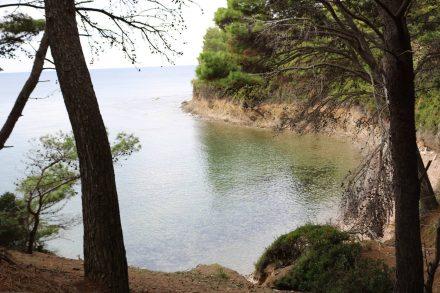 Wunderschöne Buchten direkt am Pinienwald.