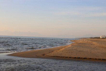 Egal ob nach Norden oder Süden - strandschlendern bis zum Abwinken.