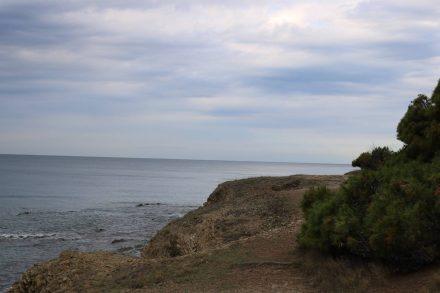Der Pfad schlängelt sich an der Küste entlang - Achtung Wildschweine.