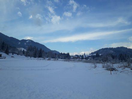 Der See im Winter.