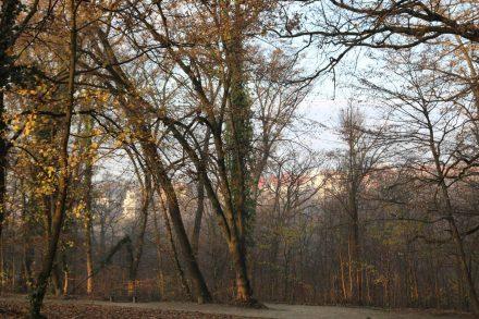 Direkt neben dem Hotel AS beginnt der schöne Tuskanac Park mit Joggern, Hundegassigehern und Morgenspaziergängern.