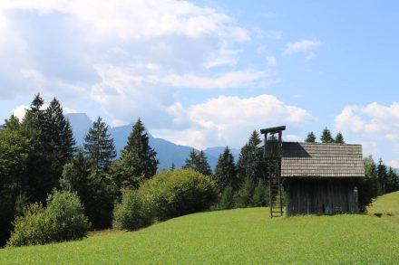 Am Kamm entlang auf Halbhöhe durch saftig grüne Wiesen mit Blick auf die Karnischen Alpen.