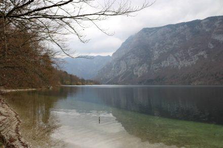 Inmitten der Berge liegt der glasklare Bohinj See.