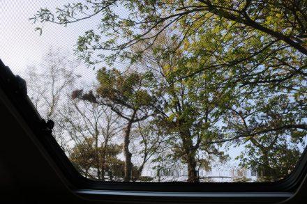 Das große Panoramafenster im Fahrerhaus des Adria Compact lässt viel Licht hinein und tolle Aussichten hinaus.