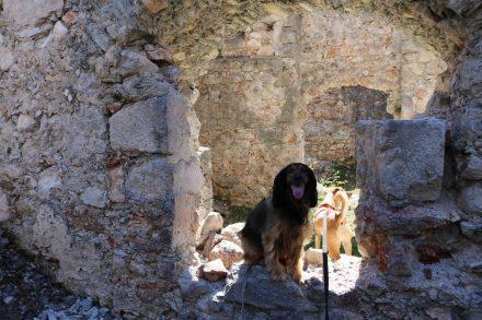 Lucy und Ella auf Ruinenkontrollgang.